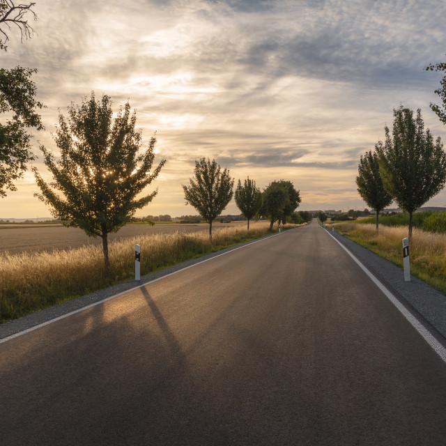 """Straight long road through fields at sundown"" stock image"