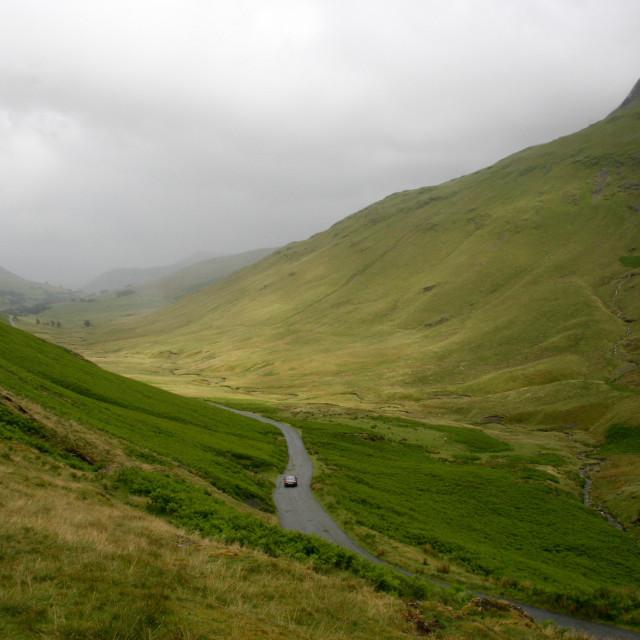 """""""Lake District loner"""" stock image"""