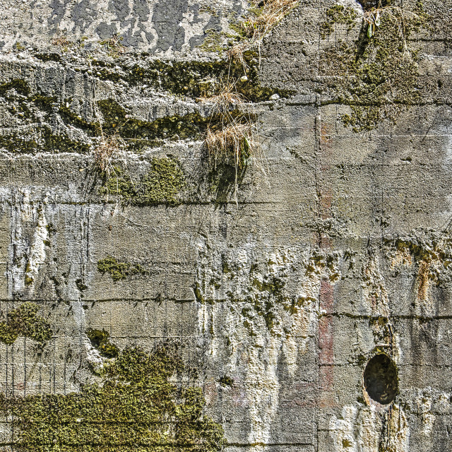 """""""Old bunker wall"""" stock image"""