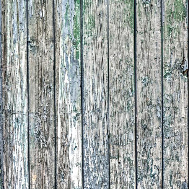 """""""Weathered wooden door"""" stock image"""