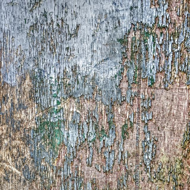 """Blue paint peeling off plywood"" stock image"