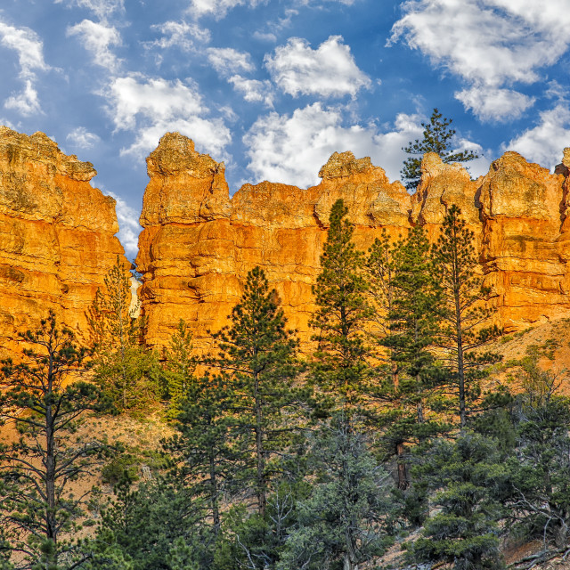 """Sandstone spires, Bryce Canyon National Park; Utah, United States of America"" stock image"