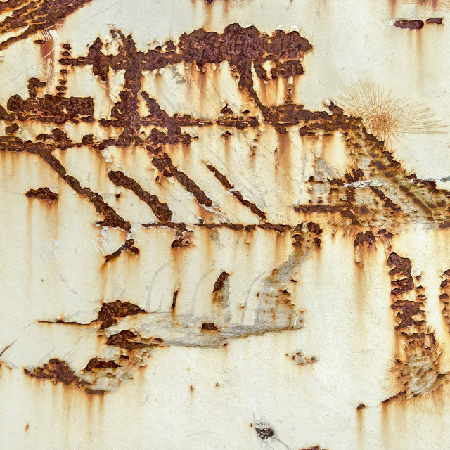 """""""White metal surface with scratches and rust"""" stock image"""