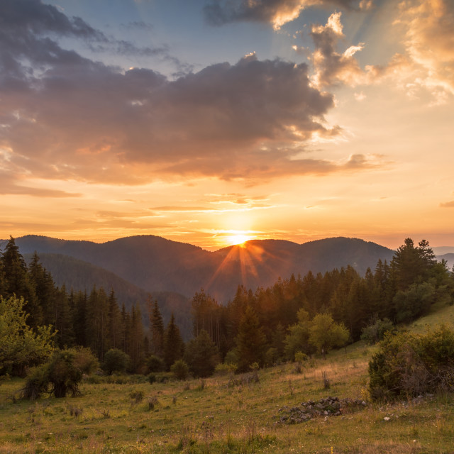 """""""Panoramic view of colorful sunrise in mountains."""" stock image"""