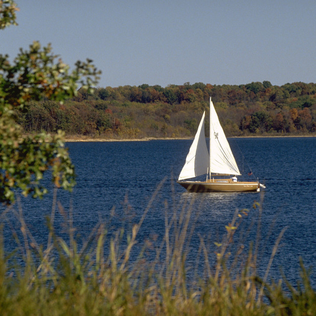 """Afternoon Sailing on Stockton Lake"" stock image"