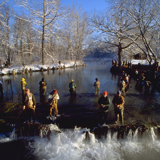 """Opening Day Trout Season at Montauk"" stock image"