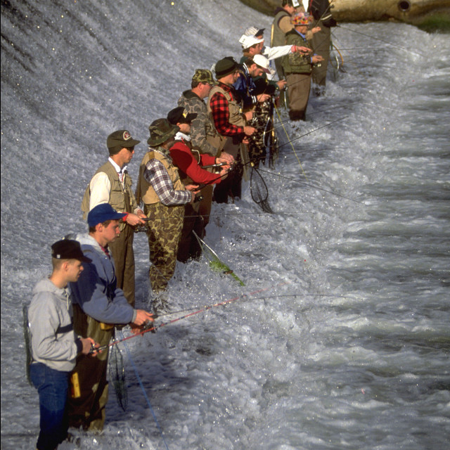 """Trout Season Opening Day at Bennett Spring"" stock image"