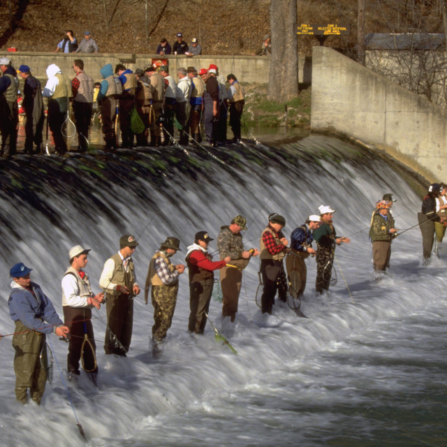 """Opening Day of Trout Season at Bennett Spring Dam"" stock image"