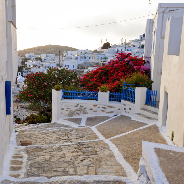 """""""White houses with flowered blue fences in Amorgos island"""" stock image"""