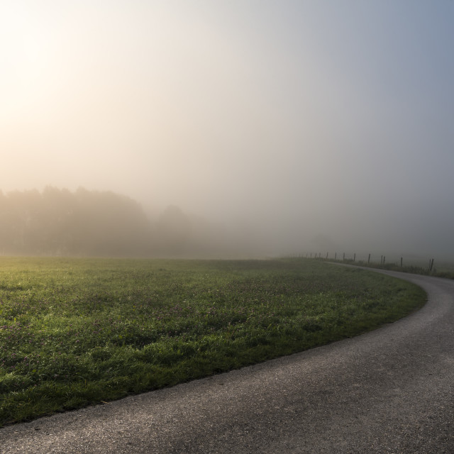 """""""Morning sun through mist and a country road"""" stock image"""