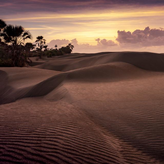 """Sand pattern sunset"" stock image"