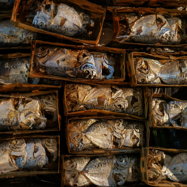 """""""salted fish in box"""" stock image"""