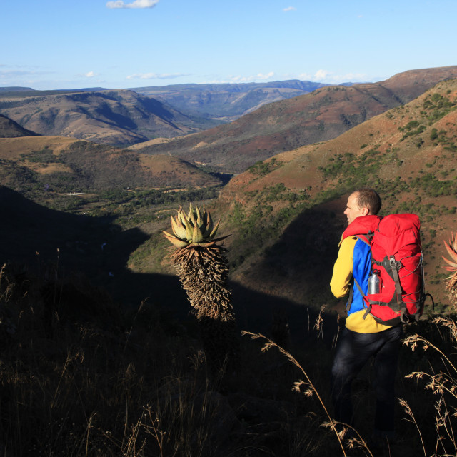 """""""Hiker in the Drakensburg Mountains, South Africa"""" stock image"""