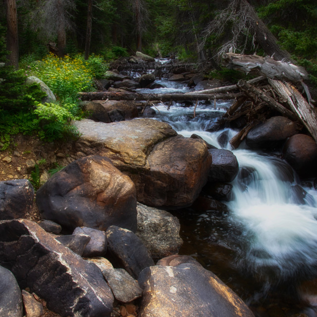 """St Vrain Creek"" stock image"