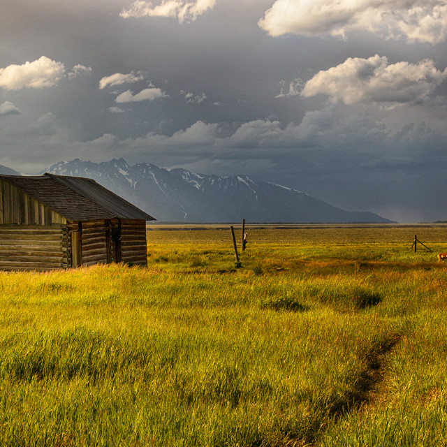 """Wyoming Homestead"" stock image"