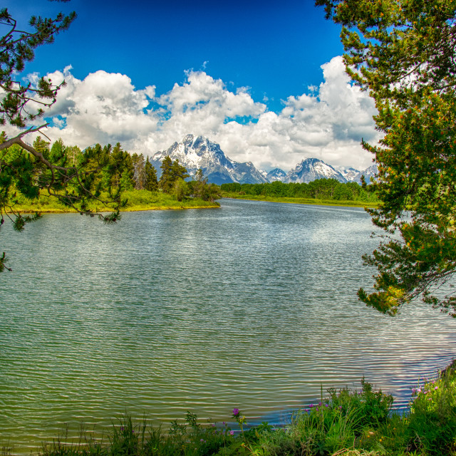 """Grand Tetons"" stock image"