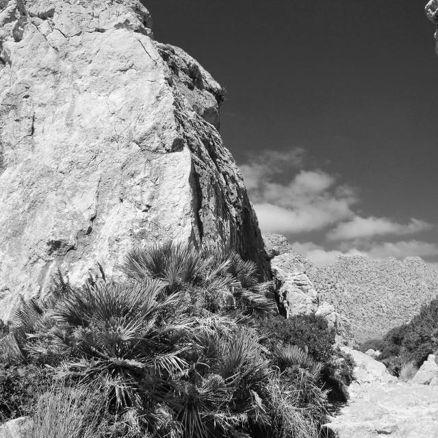 """Serra de Tramuntana mountains, Majorca"" stock image"