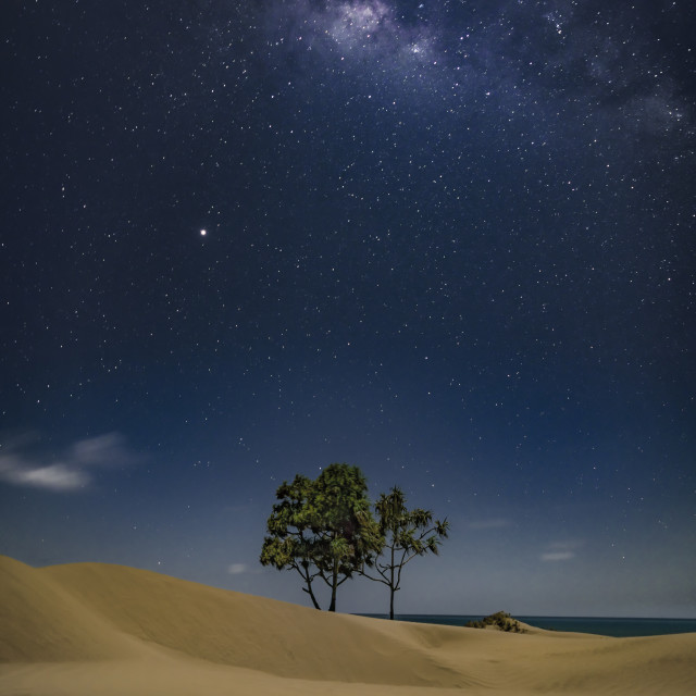 """""""milky way at the beach"""" stock image"""