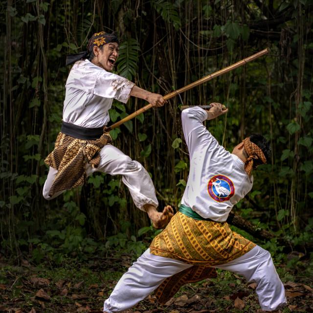 """Pencak Silat Fight 6"" stock image"