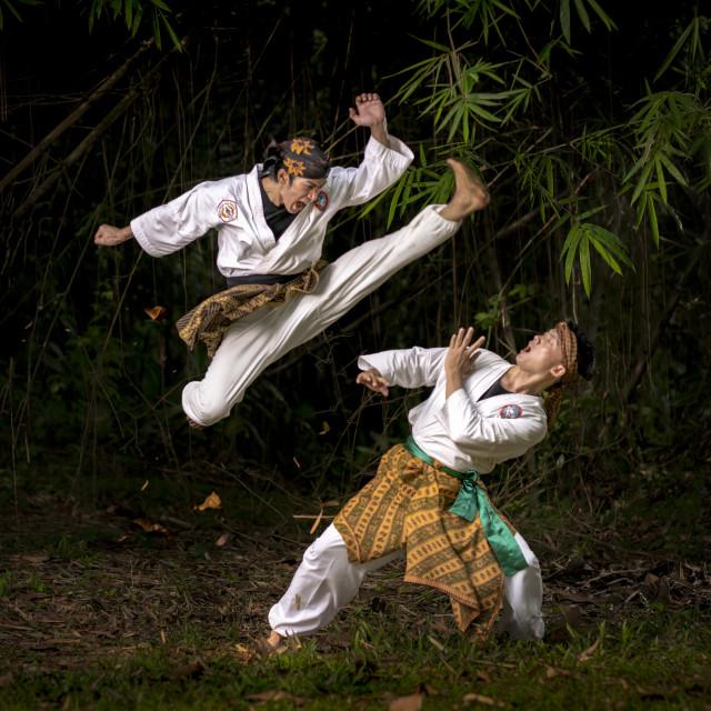 """Pencak Silat Fight 7"" stock image"