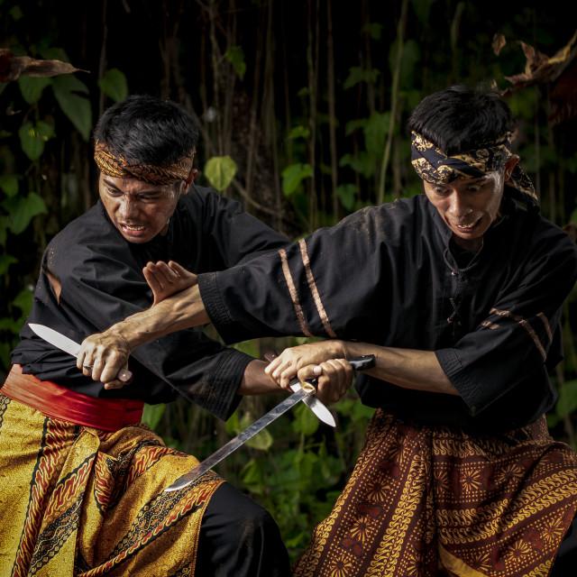 """Pencak Silat Fight 8"" stock image"