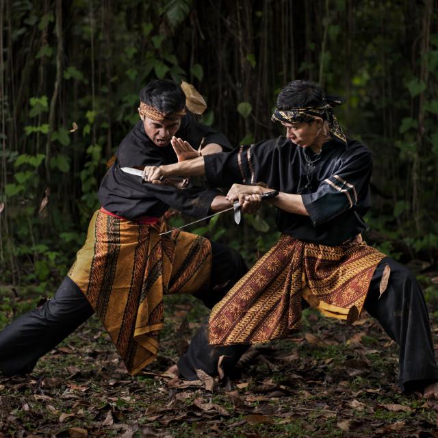 """Pencak Silat Fight 4"" stock image"