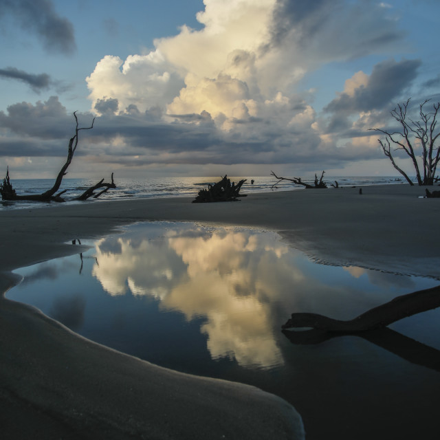 """""""Reflections in a Tidal Pool"""" stock image"""