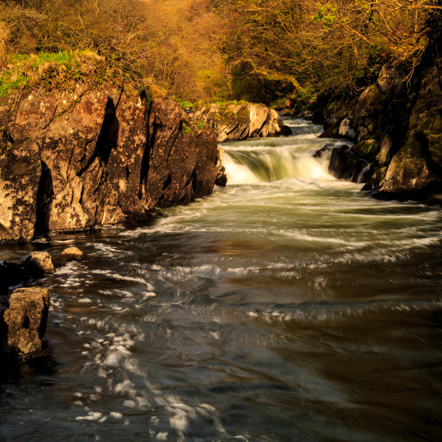 """Cenarth Falls"" stock image"