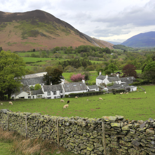 """""""Summer view over Little Town, Newlands Valley, Allerdale, Lake District..."""" stock image"""