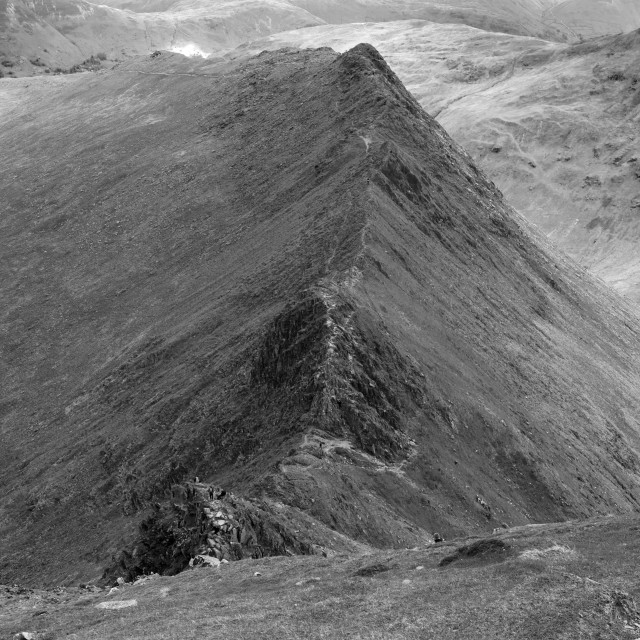 """""""Striding Edge ridge on the way to Helvellyn fell, Lake District National..."""" stock image"""