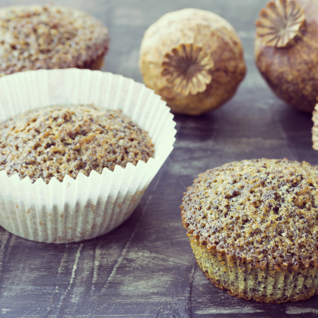 """""""Poppy seed muffins"""" stock image"""