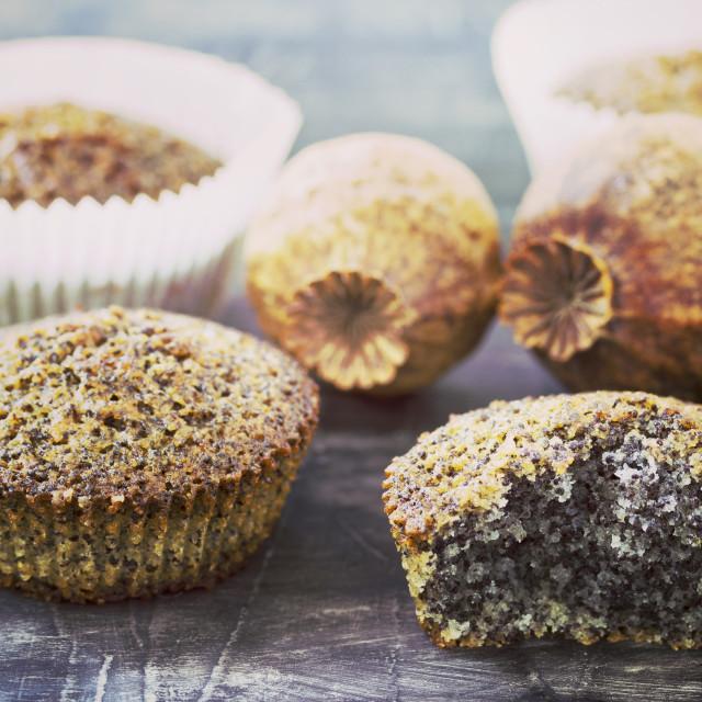 """Poppy muffins"" stock image"