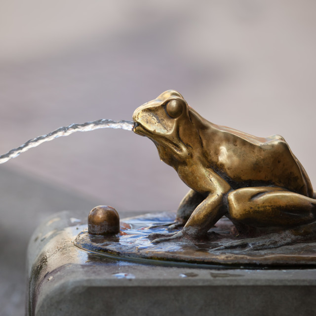 """Frog Sculpture Pouring Water Fountain Detail"" stock image"