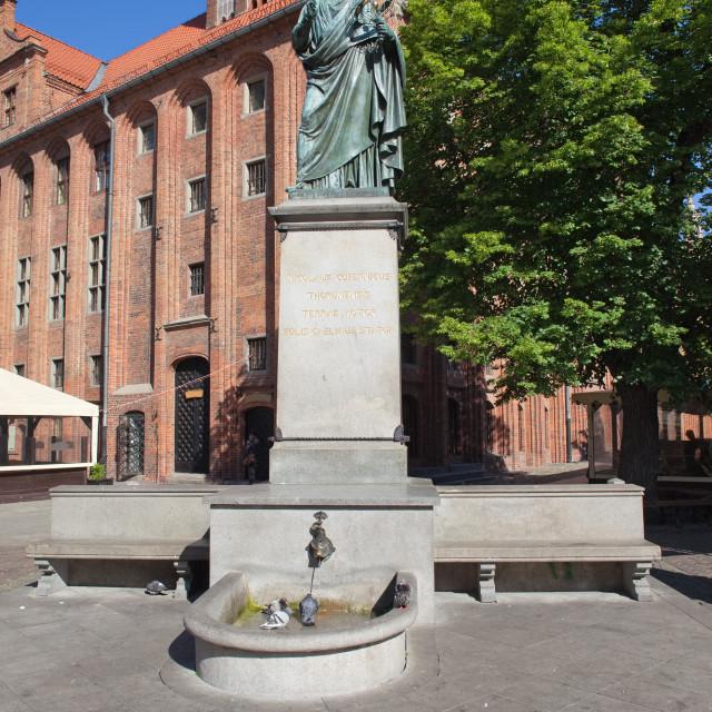 """""""Nicolaus Copernicus Monument in Torun"""" stock image"""