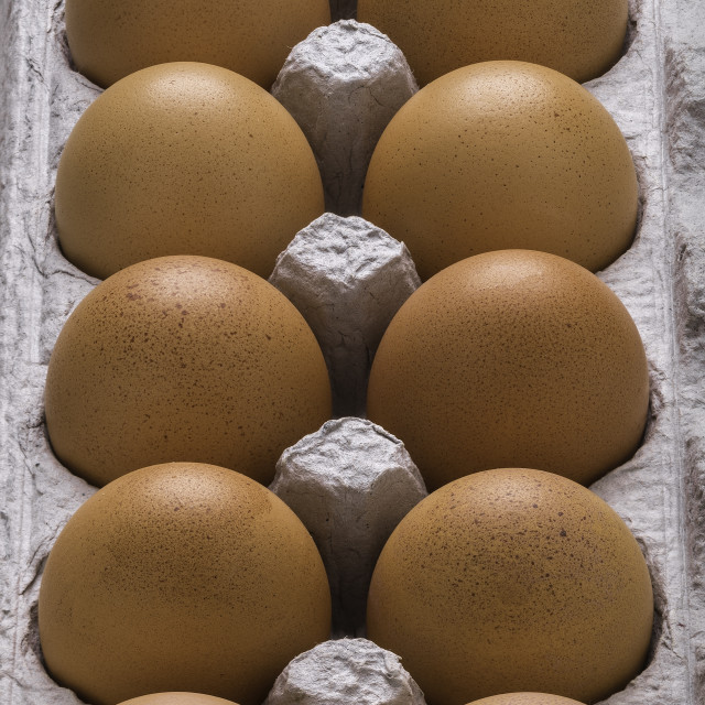 """Brown Eggs In Carton"" stock image"