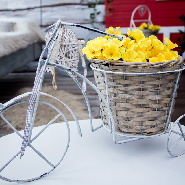 """""""bride and groom near white vintage bicycle"""" stock image"""