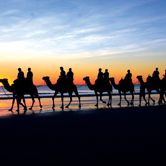 """Sunset camel ride"" stock image"