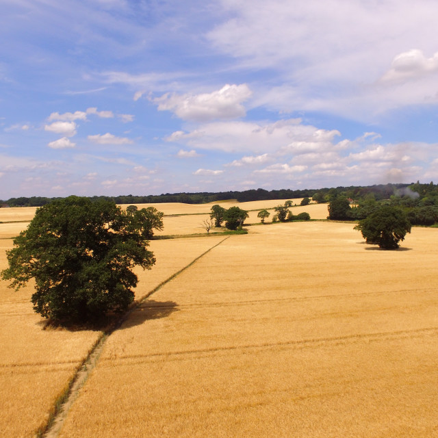 """Aerial view of Sussex farmland."" stock image"