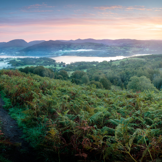 """Dawn Mists over Windermere"" stock image"