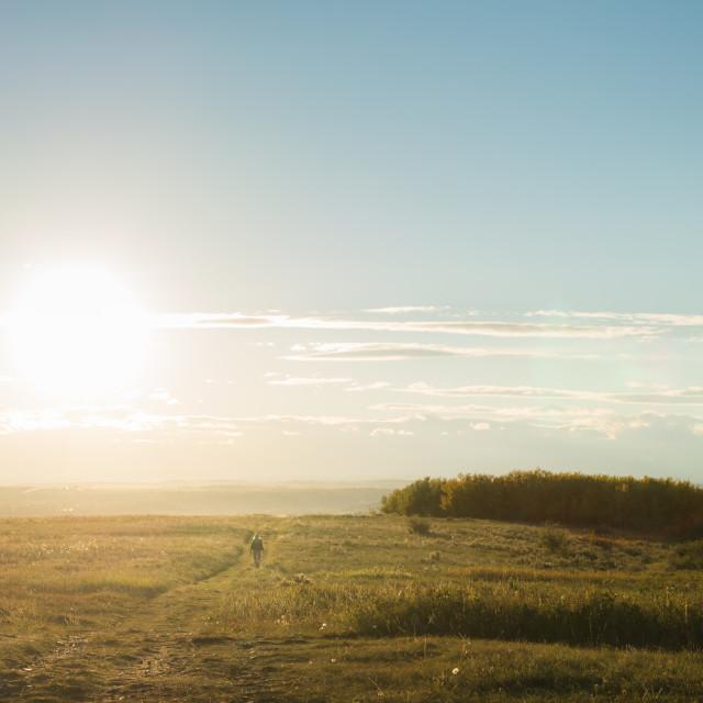 """Sunny Prairie"" stock image"