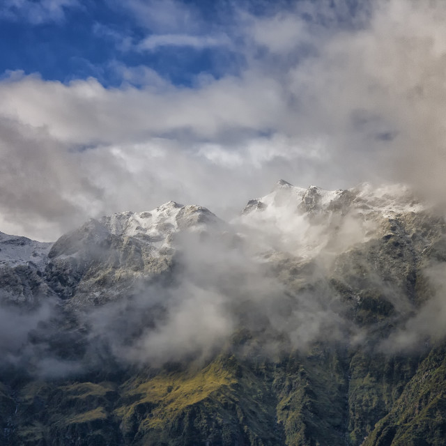 """Franz Josef Glacier, New Zealand"" stock image"