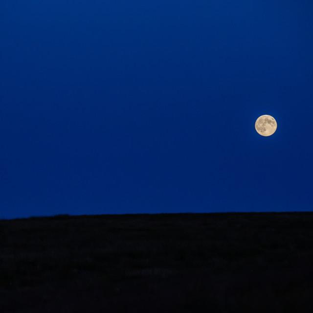 """Strawberry Moon Rising"" stock image"