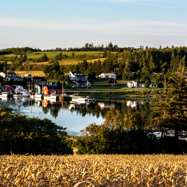 """""""French River Harbour"""" stock image"""