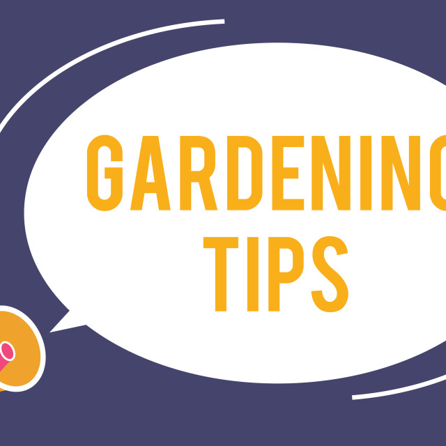 """""""Word writing text Gardening Tips. Business concept for Proper Practices in..."""" stock image"""
