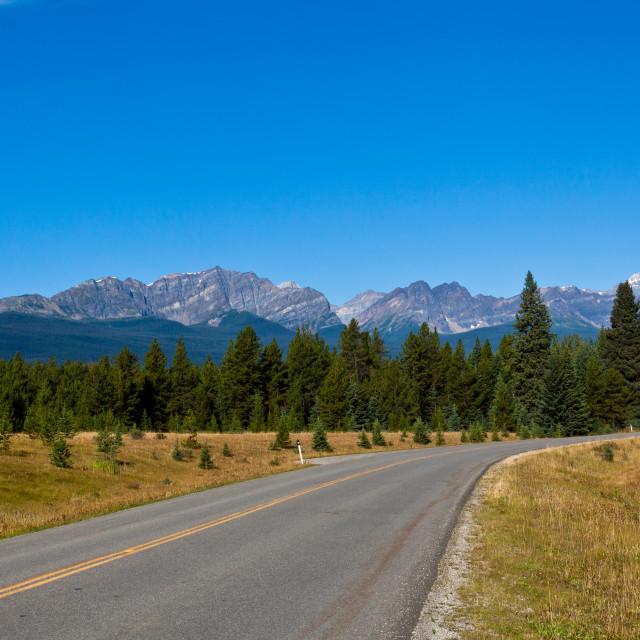 """Roadside view - Banff National Park, Alberta, Canada"" stock image"