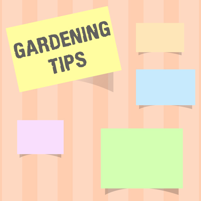 """""""Handwriting text Gardening Tips. Concept meaning Proper Practices in growing..."""" stock image"""