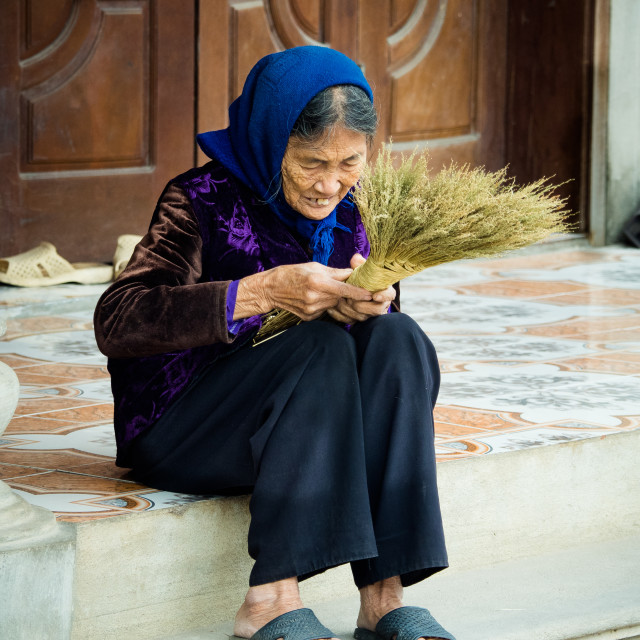 """Happy old lady in velvet, Vietnam"" stock image"