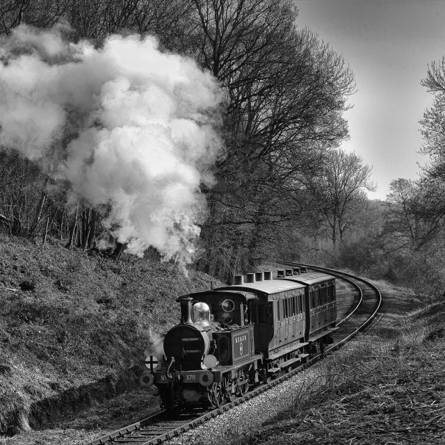 """""""Vintage train in LIndfield Wood"""" stock image"""