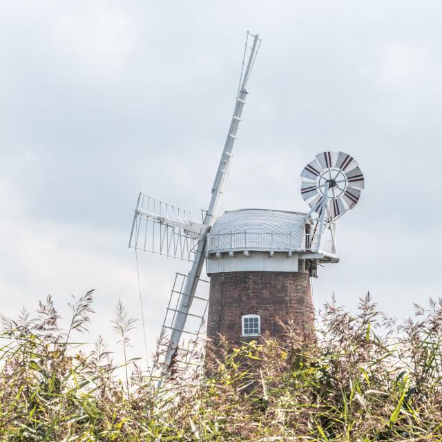 """Windmill at Horsey, Norfolk, UK"" stock image"