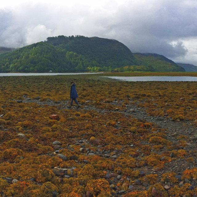 """Panoramic view of Eileen Donan and Scottish Loch"" stock image"